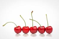 cherries-row.jpg