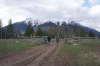 Silver Tip Ranch_KC_farmtour_23Apr2019 (9).jpg