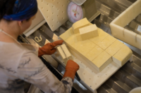 Tofu Cutting.jpg