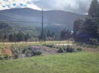 Hawthorne-Creek-Farm-Fields3-Laticia-Chapman.jpg