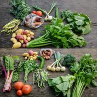 Glade-veggies.jpg