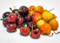 cherries-variety.jpg