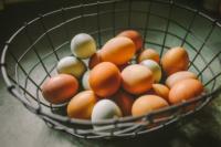 eggs-1-scaled.jpg